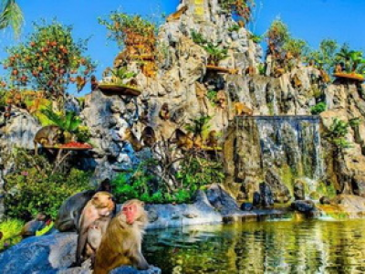 Tour Đảo Khỉ Suối Hoa Lan Nha Trang
