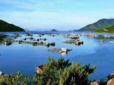Du lịch Phú Yên Qui Nhơn 4 Ngày 3 Đêm